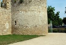 Brie-Comte-Robert / La ville de Brie-Comte-Robert est située en Seine-et-Marne. Elle possède un patrimoine intéressant notamment son château.