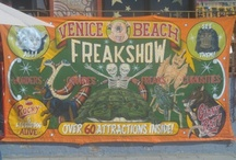 FreakShow / Anything Carnival/ Freakshow related. / by Strange But True