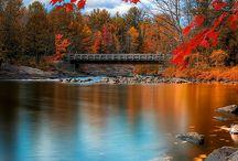 *Fall, lovely season*