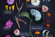 #Spring #Wedding #Flowers