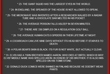 Pointless things to know