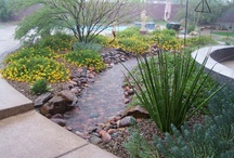 Landscape Ideas / Some images of landscaping ideas for an upcoming project / by Claude Bailey