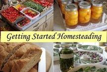 Homesteading / Tips to become more self reliant.