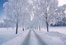 Beautiful scenes of Nature