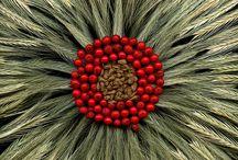 horticulture art