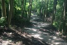 Pictures I have taken / Mountain biking