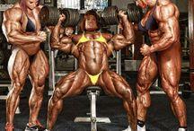 Gym / Female bodybuilders