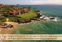 Maui Tips / Check out these Maui Tips to make the most of your time in paradise!