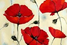 Pictures of Poppys