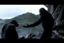 @# La Planète des singes : l'affrontement streaming film complet en Français