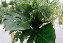 Tropische  Hochzeit,  tropical wedding