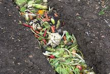 Soil & Compost / How to make a great soil for your plants. Ground to grow better yield. Compost creativity