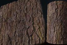 Texture_Wood&Tree