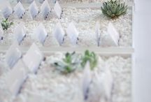 Place Cards Ideas