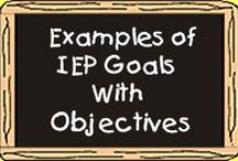 IPP Goals & Accommodations
