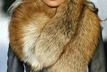 Gorgeous And Silky Fur / www.tweet4gold.weebly.com