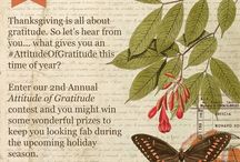 Sample Attitude of Gratitude Board / Our social media squad created this sample board for us as an example of how/what to pin. Your pins can include Thanksgiving, family and things that you are grateful for. Start pinning!  / by La Jolla Cosmetic Surgery