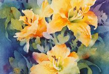 Day lilies watercolor