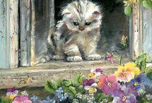 cat/window