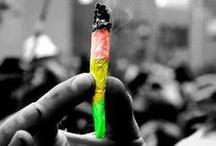 vert, jaune rouge♥