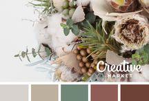• Color Palette •