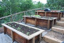 Vegetable beds on a slope
