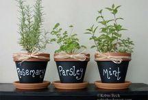 ogrodowe pomysły