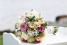 Vintage Pastel Shabby Chic Wedding / by Louise Hutchings