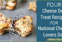 Dog Treats and Food Recipes / DIY treat and foods for your pup.