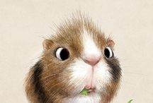 funny animal drawings