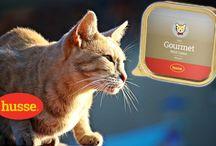 Alle für die Katze von Husse Tiernahrung
