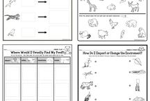 Cool teaching worksheets