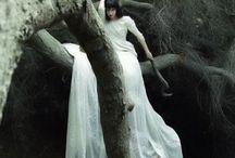 fairy alike
