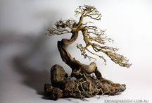 New Driftwoods -Exoaquaristic / Discover new driftwoods at Exoaquaristic http://www.exoaquaristic.com.au/
