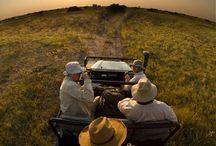 Safari Gear / Gear apt for safari travel