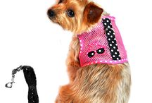 Mesh Summer Dog Harnesses / Keep your pup cool in warm summer months with our netted dog harnesses.