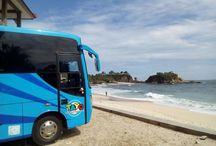 Sewa Bus Jogja / Daftar Sewa Bus Pariwisata Jogja Harga Murah