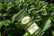 Herbata ciekawa świata w Malezji / Malezja to państwo Azji Południowo - Wschodniej, ze stolicą w Kuala Lumpur. Jest to kraj wielokulturowy, mieszkają tu Hindusi, Chińczycy i Majowie. Znajdziemy tu prawie wszystko - rajskie plaże, dżungle, wielkie miasta oraz przepyszne jedzenie.