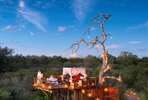 Luxury Accommodation Greater Kruger Park