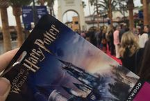 Wizarding World of Harry Potter / The Wizarding World of Harry Potter at Universal Studios Hollywood is now open!