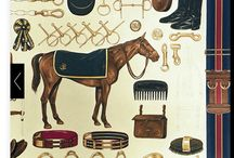 INSPIRATION   EQUESTRIAN STYLE