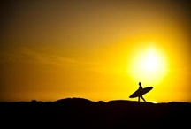 surf photos i love / a selection of surf photos from all over the planet / by N.D. Surfboards