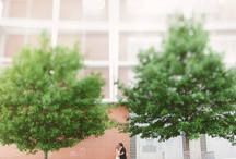 Wedding Photos I love / by Caitlin McWeeney