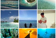Holiday Collage / random bits and pieces while at Hadahaa