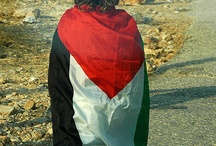 Free Palestine✌ / If you're for the freedom of Palestine, just follow the board or comment ADD ME! under my pin. Invite as you please!! :)