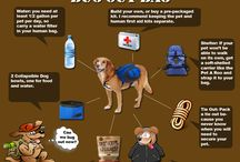 Pet Emergency Evacuation Bags, Kits, Lists etc / Everything pet related when evacuating from disaster. With some stuff I think would be great for pets but made for other purposes. / by Purdy