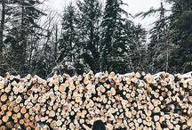 Venkovní focení - podzim zima