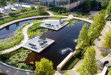 Landscape :: Campuses