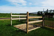 Koně-sprchovací místo
