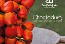 Gestión Gastronómica / Platos, restaurantes, zonas gastronómicas de Cali y El Valle del Cauca